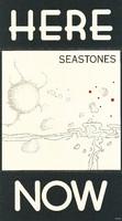 Ned Lagin - Seastones - Here/Now