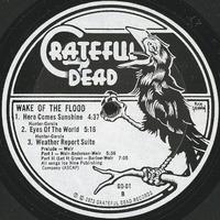 Wake of the Flood [album cover]