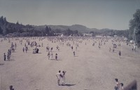 Deadheads: panoramic view