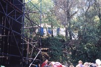 Deadhead plastic tree-house (?)