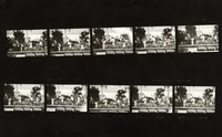 "Grateful Dead at ""A Day on the Green #8"": contact sheet with 10 images"