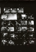 Allman Brothers at Gaelic Park, with Jerry Garcia: contact sheet with 25 images