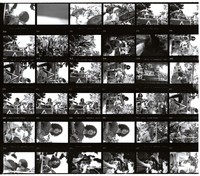 "Grateful Dead at the ""Palo Alto Be-In"": contact sheet with 35 images"