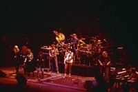 Bangles and Grateful Dead: Debbi Peterson, Michael Steele, Vicki Peterson, Susanna Hoffs, Phil Lesh, Bob Weir, Bill Kreutzmann, Cyril Neville, Jerry Garcia, Ivan Neville, Brent Mydland