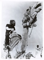 Grateful Dead in Egypt: Jerry Garcia riding a camel
