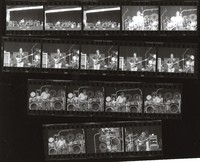 Grateful Dead: contact sheet with 17 images