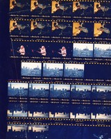 Vince Welnick at Riverport Amphitheatre and Soldier Field: contact sheet with 30 images