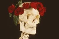 Deadhead art: skull and roses
