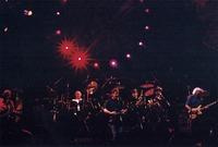 Grateful Dead: Phil Lesh, Bob Weir, Bill Kreutzmann, Mickey Hart and Jerry Garcia