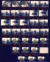 Grateful Dead at the Sam Boyd Silver Bowl: contact sheet with 31 images
