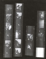 Grateful Dead, possible at the Family Dog, ca. 1969: contact sheet with 16 images