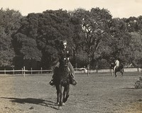Phil Lesh at Mickey Hart's ranch