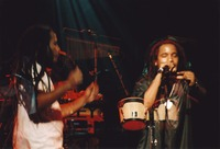Ziggy Marley and the Melody Makers: Stephen Marley and Ziggy Marley