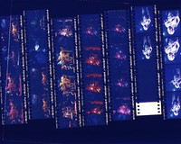 """Grateful Dead: """"Dead Images"""" 1995 #4: contact sheet with 26 images"""