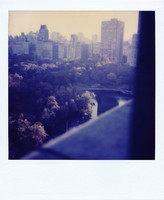 Grateful Dead at Radio City Music Hall: Central Park from a hotel window