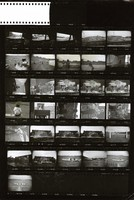 Grateful Dead at Yale: contact sheet with 31 images