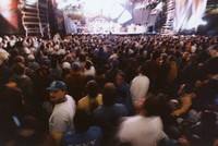 Grateful Dead at Madison Square Garden: crowd scene