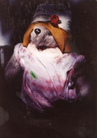 Deadhead toy dog in costume, ca. 1986
