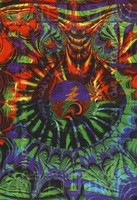 Grateful Dead, David Murray and Octofunk. Mardi Gras. February 24-26, 1995, Oakland Coliseum