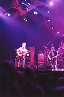 Grateful Dead: Phil Lesh, Bob Weir, with Bill Kreutzmann in the background