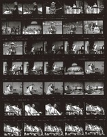 Furthur Festival at Pine Knob Music Theatre: contact sheet with 35 images