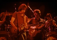 Grateful Dead: Bill Kreutzmann, Bob Weir, Phil Lesh, Mickey Hart