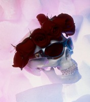 Grateful Dead merchandise: sunglasses displayed on a skull with roses