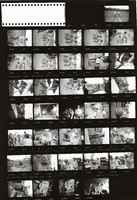 Grateful Dead at Gaelic Park: contact sheet with 35 images