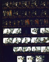 Grateful Dead at Shoreline Amphitheatre, Bob Dylan and Tony Garnier at Franklin County Field: contact sheet with 32 images
