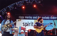 Ziggy Marley and the Melody Makers: Ziggy Marley and Stephen Marley