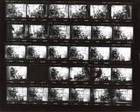 Grateful Dead at 710 Ashbury Street: contact sheet with 29 images