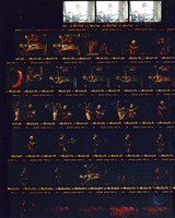 Grateful Dead and Tibetan Monks at Portland Meadows and Shoreline Amphitheatre: contact sheet with 33 images