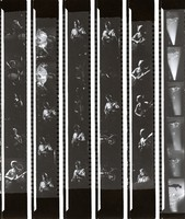 Grateful Dead, ca. 1970s: contact sheet with 31 images