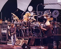 Grateful Dead: Bob Weir, Bill Kreutzmann, Jerry Garcia and Mickey Hart