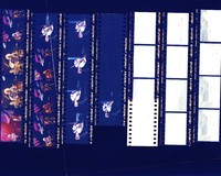 "Grateful Dead: ""Dead Images"" 1995 #7: contact sheet with 13 images"