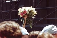 Deadhead with roses