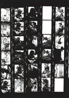 Grateful Dead at Lindley Meadows: contact sheet with 27 images