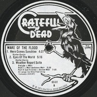 Wake of the Flood [album cover]