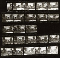 "Grateful Dead at ""A Day On The Green #8"": contact sheet with 23 images"