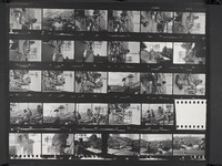 Grateful Dead during the Transcontinental Pop Festival: contact sheet with 29 images