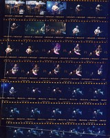 Grateful Dead at Soldier Field: contact sheet with 35 images