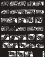 Furthur Festival at Pine Knob Music Theatre: contact sheet with 33 images