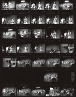 Furthur Festival at Pine Knob Music Theatre: contact sheet with 37 images