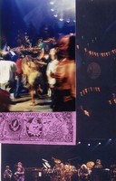Grateful Dead Mardi Gras: Phil Lesh, Bob Weir, Bill Kreutzmann, Mickey Hart, Jerry Garcia