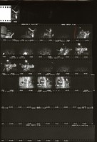 Allman Brothers at Gaelic Park, with Jerry Garcia: contact sheet with 19 images